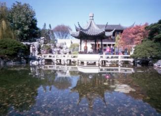 Portland's Chinese Gardens